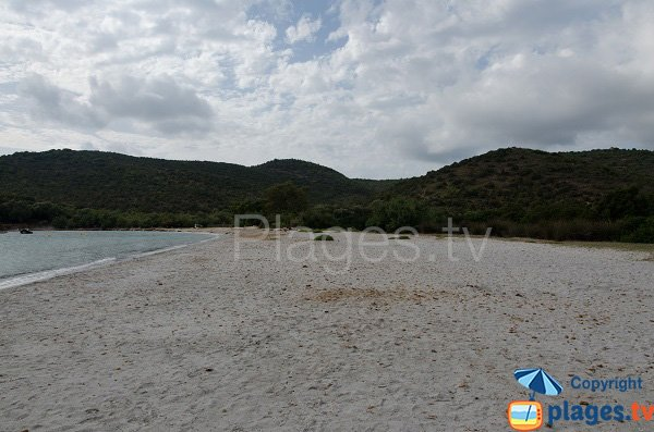 Large beach in the cala of Furnellu - Corsica