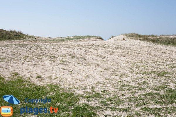 Dunes de Glatigny au niveau de la plage des Galets des Mielles - Manche