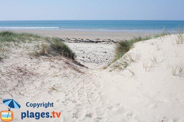 Plage sauvage avec des dunes à Glatigny - Manche