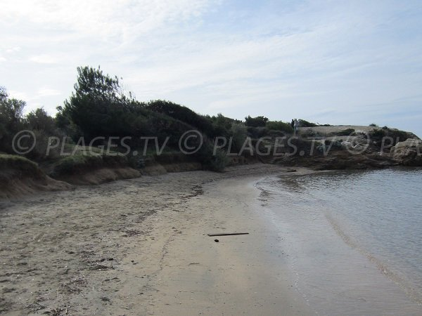 Gaou beach near Brusc port in Six Fours les Plages