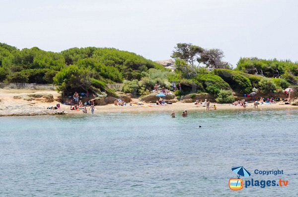 Photo of Gaou beach in Six Fours les plages in France
