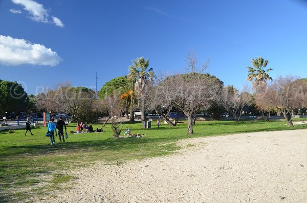 Environment of the beach of the Vieux Salins in Hyeres