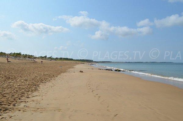 Environnement de la plage de Gautrelle