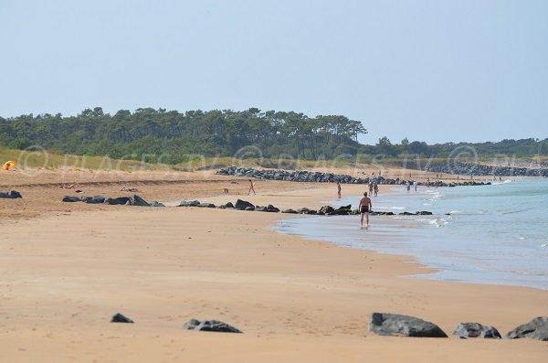 Digues de la plage de Gautrelle