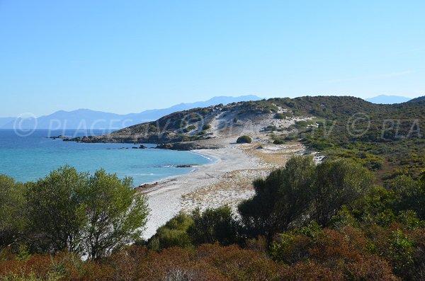 Spiaggia di Ghignu in Corsica