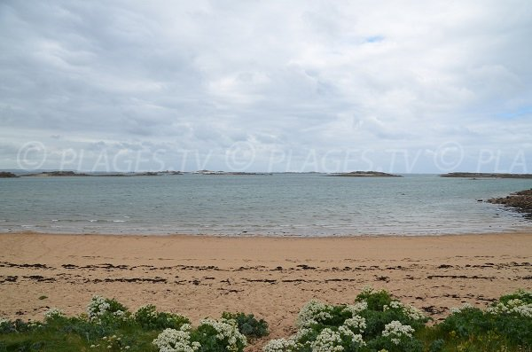 Ilots dans la baie de Goas Treiz - Trébeurden (22)