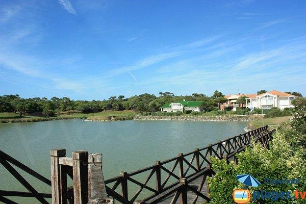Pond and Golf Saint Jean de Monts near the beach