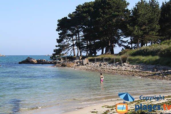 Baignade sur la plage de Gouermel en Bretagne