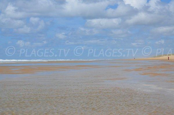 Espace de baignade sur la plage du Grand Crohot au Cap Ferret