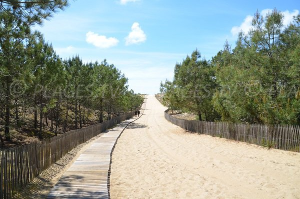 Access to Grand Crohot beach in Cap Ferret