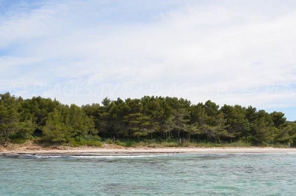 Spiaggia selvaggia di Grand Jardin di Bormes les Mimosas