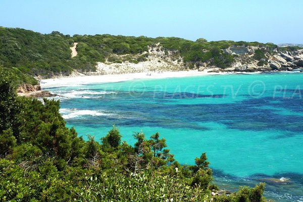Photo of Grand Sperone beach in Bonifacio in Corsica