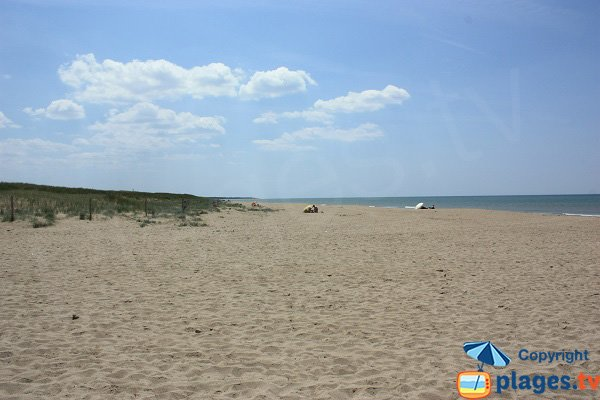 Photo of Grande Cote beach - La Barre de Monts