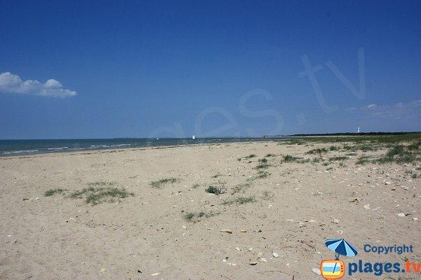 Vue sur Noirmoutier depuis la plage de la Grande Côte - Barre de Monts