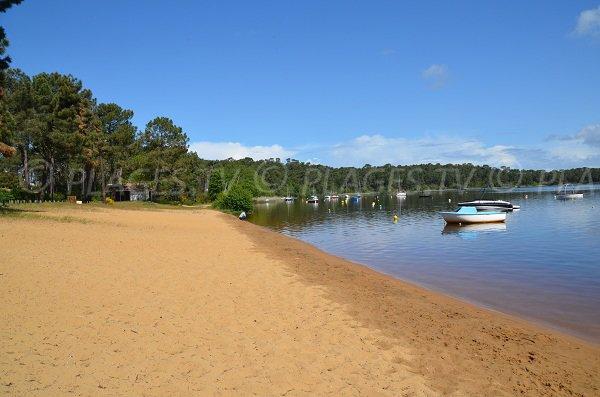 Grande Escoure beach in Lacanau lake - France