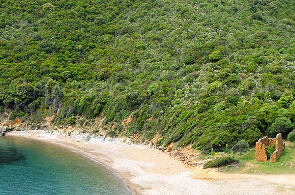Spiaggia di Gratelle - golfo di Porto - Corsica