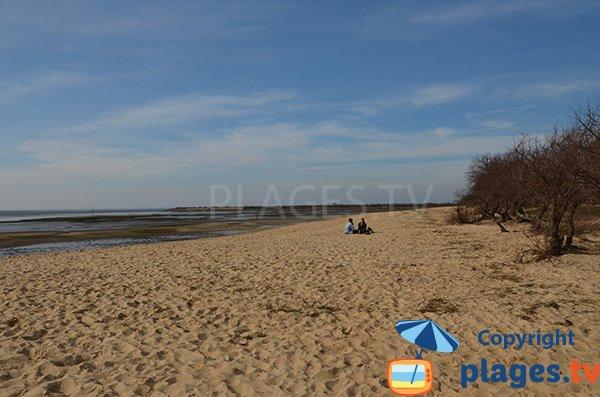 Photo de la plage de Graveyron à Audenge
