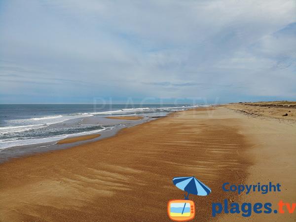 Grande plage sauvage à Hossegor