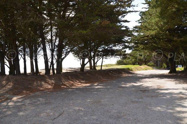 Parking de la plage du Grazu à La Trinité
