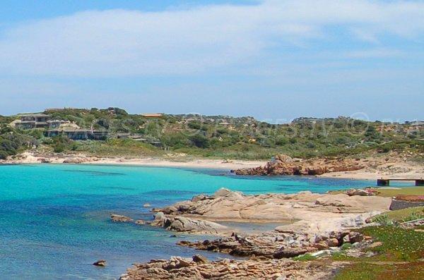 Cala di u Grecu - island of Cavallo - Corsica
