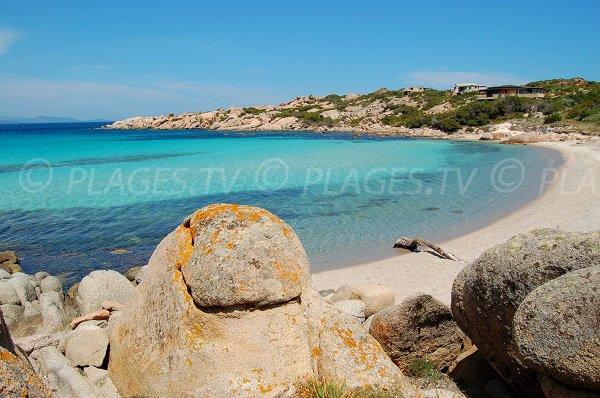 Sand beach in the north of Cavallo island