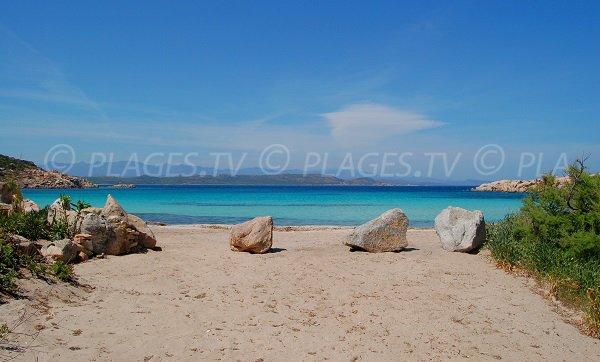 Cavallo Island beach with Bonifacio view