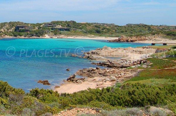 Photo of Grecu beach - island of Cavallo - Corsica