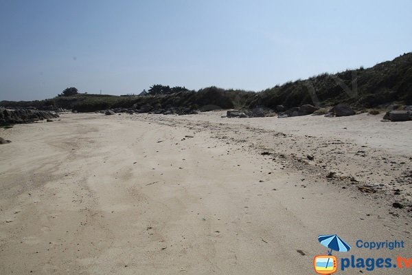 Dunes de la plage de la Grenouillère - Cléder