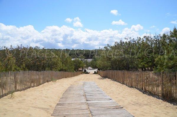 Caillebotis sur la dune de Le Porge