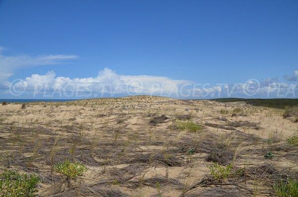 Vue sur les dunes depuis Le Porge