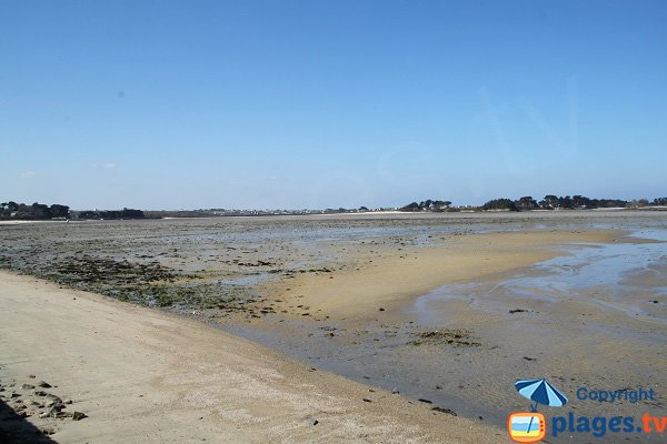 Beach of Groa Rouz at low tide in Roscoff