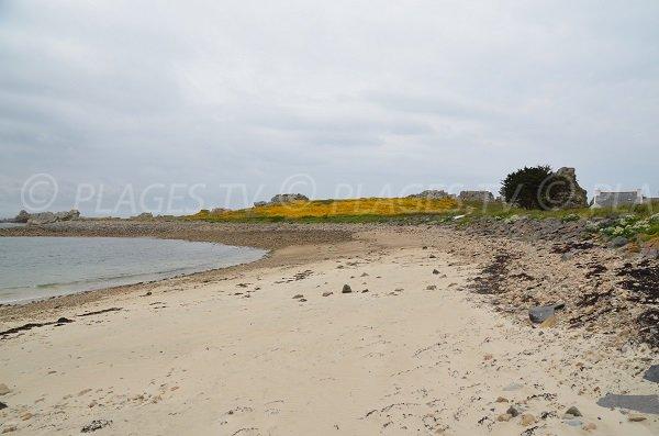 Photo de la plage de Castel Meur en direction du Gouffre - Plougrescant