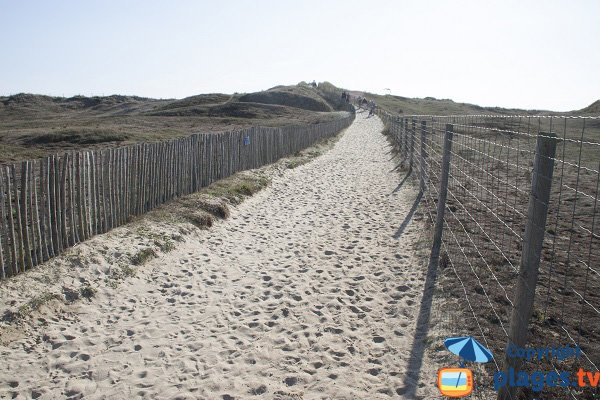 Trail access to the Guerite beach through the dunes - Plouharnel