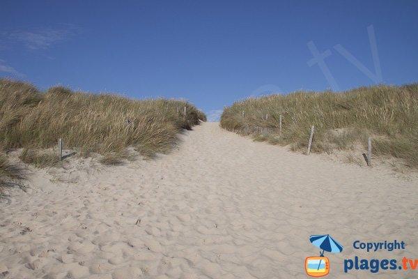 Dunes de la plage de la Guérite - Plouharnel