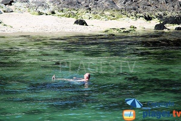 Se baigner sur l'estuaire de la Goyen - bretagne