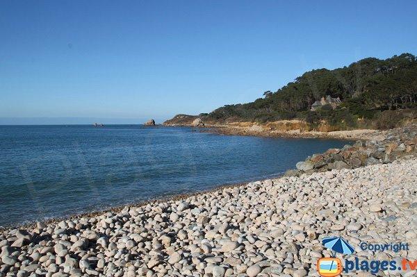 Photo de la plage de Guerzit à Plougasnou
