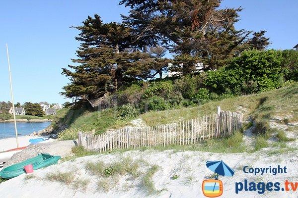 palissades le long de la plage de Gwisselier à Landunvez