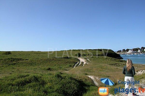 dune à Landunvez - Gwisselier