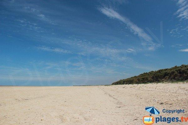 Grande plage sauvage proche de Calais - Les Hemmes