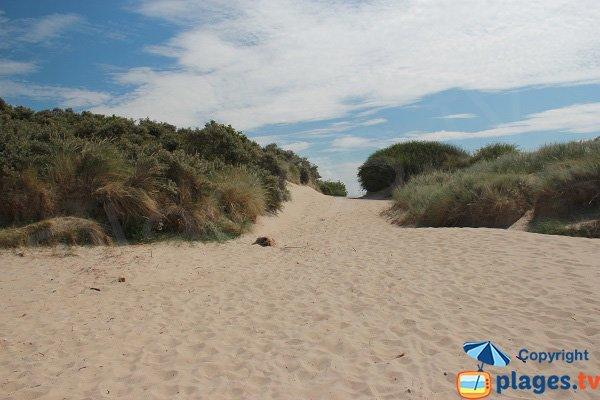 Accès à la plage des hemmes - Oye-Plage