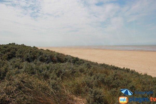 Photo de la plage des Hemmes à Oye-Plage