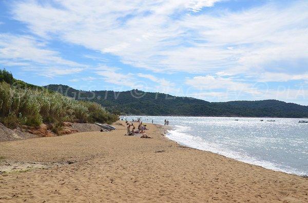 Photo de la plage Héraclée de La Croix Valmer - Zone ouest