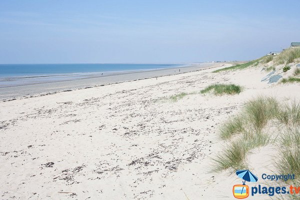 Dunes beach in Donville