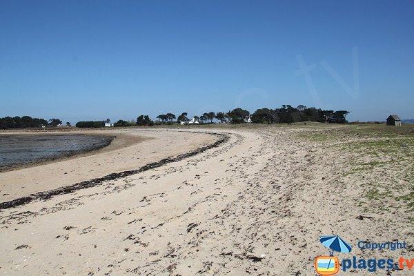 Hopital beach - Callot island - Carantec