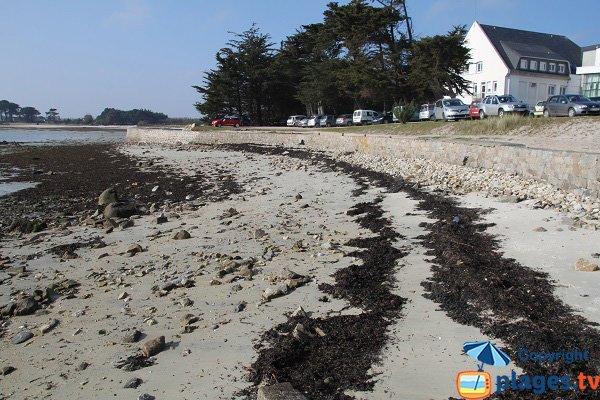 Helio Marine center of Roscoff and its beach