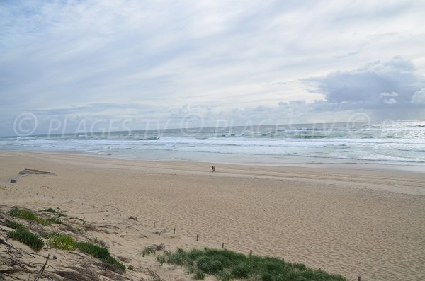 Photo of Horizon beach in Cap Ferret - France