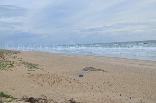 Large beach in Cap Ferret - Horizon