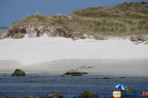 Dunes around the Horn River in Santec