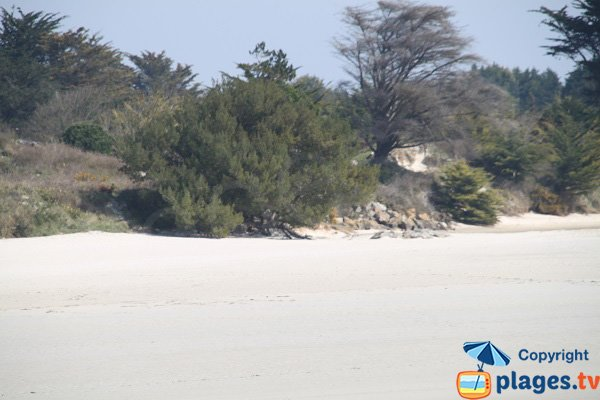 Beach view from Plougoulm - Santec