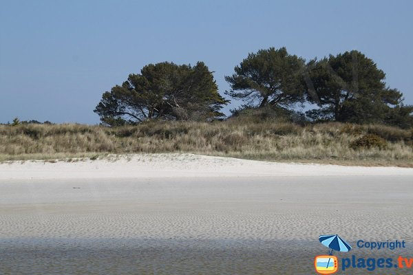 Beach with fine sand in Santec